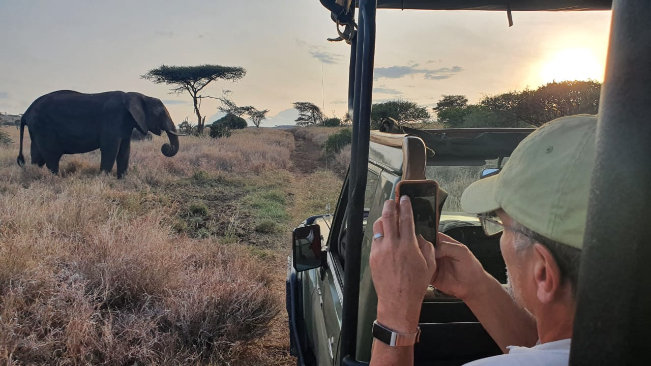 Guest filming an elephant with a smartphone